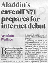 https://www.irishtimes.com/life-and-style/homes-and-property/fine-art-antiques/aladdin-s-cave-off-n71-to-make-internet-debut-1.3596171